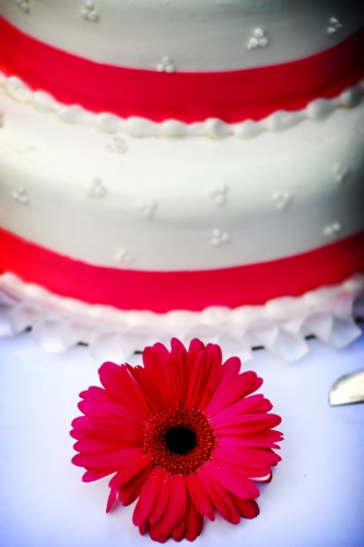 Cake Design and Baking