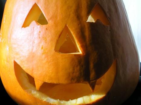 High Profit, Fun, Seasonal Halloween Store Franchise For Sale