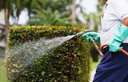 Iowa Great Lakes Landscaping & Spraying Service For Sale