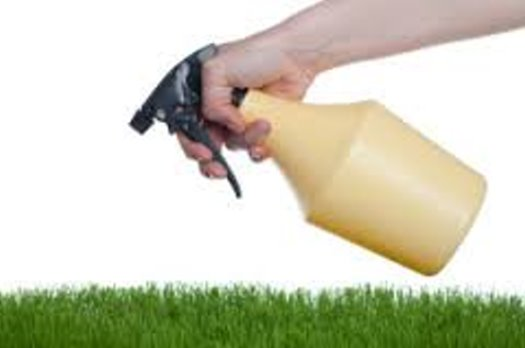 Very Easy to Run & Profitable Lawn and Pest Control Business For Sale