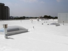 Highly Profitable Fluid Applied Roofing Installation