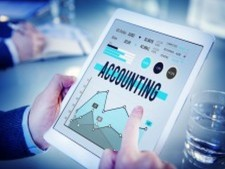 Well Established Accounting & Consulting Company
