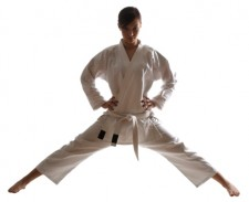 Extremely Profitable and Well Known Martial Arts School For Sale