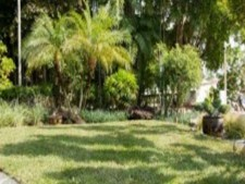 Lawn Landscaping - Lender Pre-Qualified
