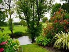 Landscape Maintenance Business