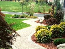 Landscaping and Construction Company