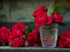 NE SD Flower/Gift Shop