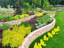 Landscape Design and Construction Business