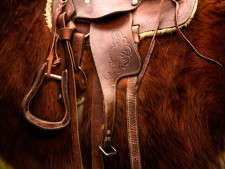 Horse Lovers-Retail Dream Store For Sale