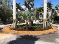 High-End Commercial Landscaping Co. in Miami